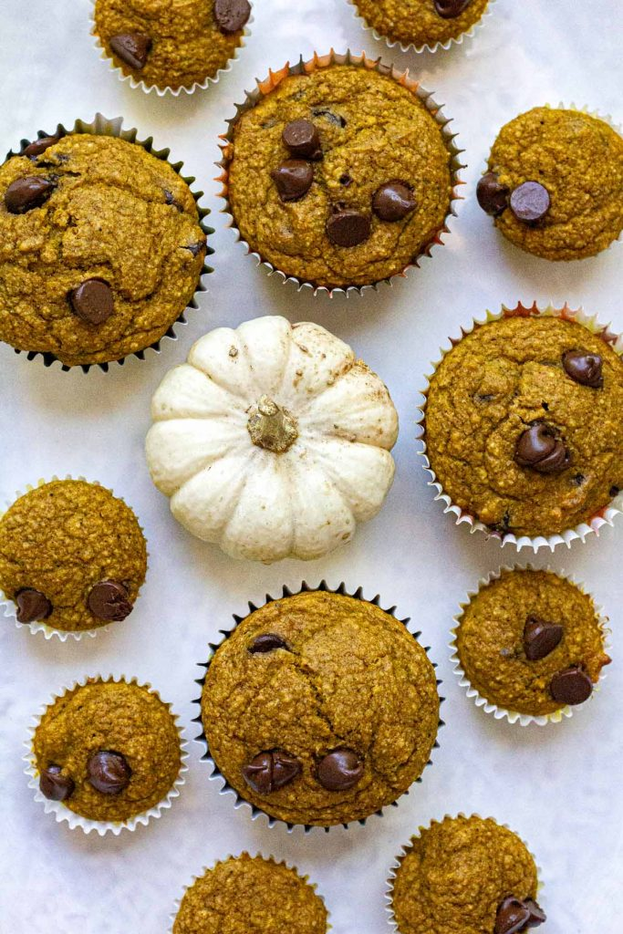 Mini and regular sized pumpkin chocolate chip muffins pictured with a white pumpkin from above.